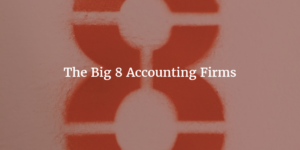 Big 8 Accounting Firms