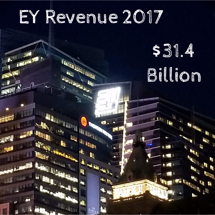 EY Revenue 2017